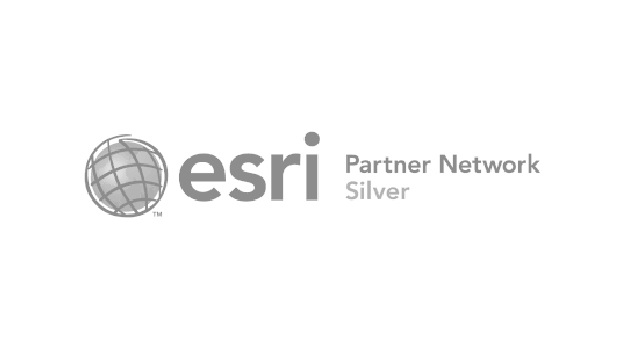 1 Partner Esri